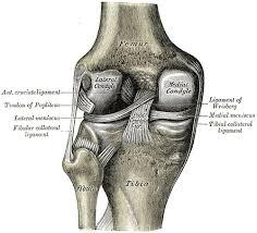 The Traumatic Initiation of Arthritis